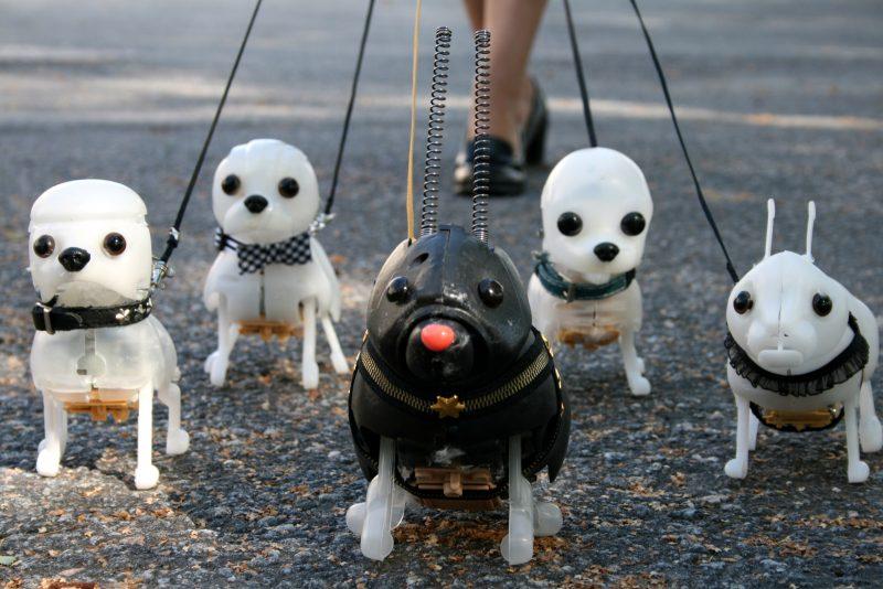 Pavlovin-koirat-1