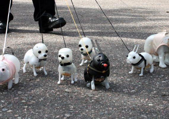 Pavlovin koirat 2009
