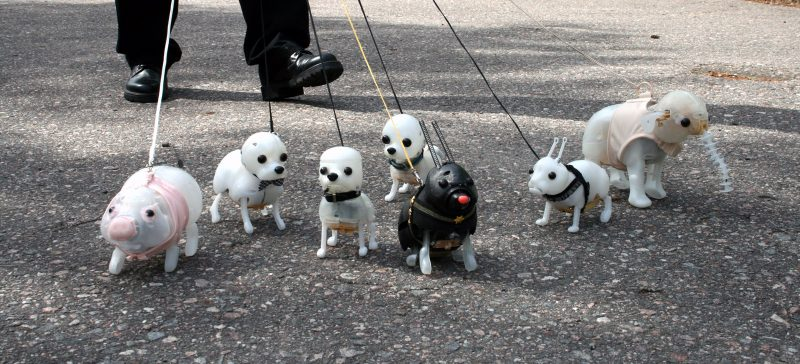Pavlovin-koirat-2