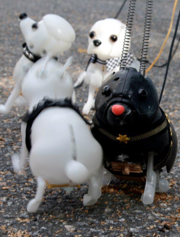 Pavlovin-koirat-liikkuu
